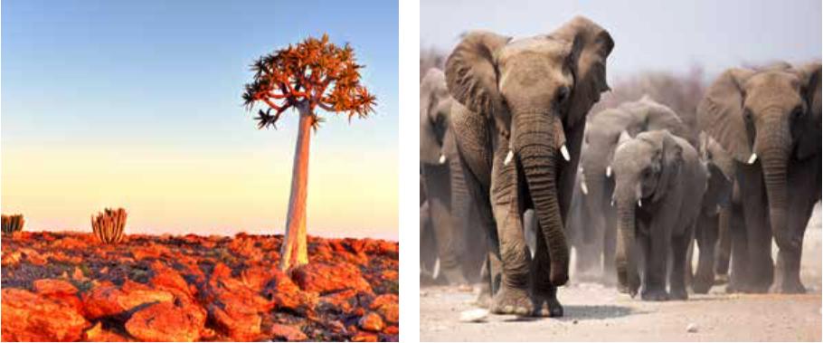 AKILANGA DMC & EVENTS NAMIBIE